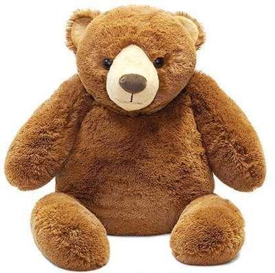 Изображение Медведь лежачий